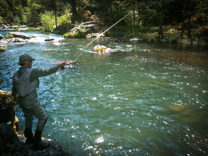mccloud river fly fishing wild waters fly fishing