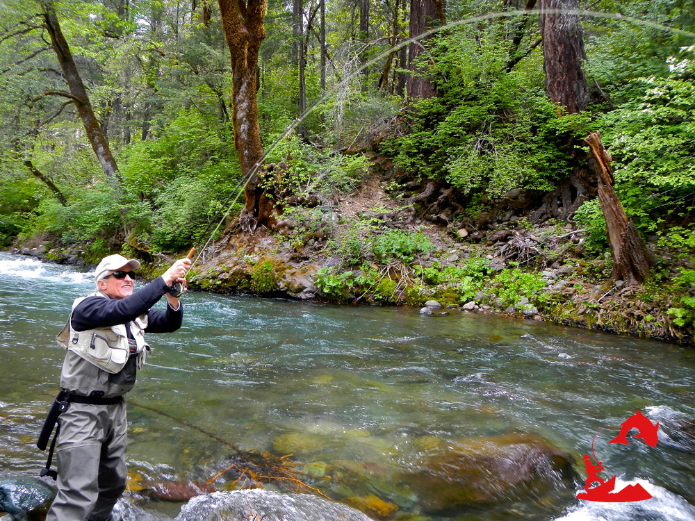 Mccloud river fishing wild waters fly fishing for River fly fishing