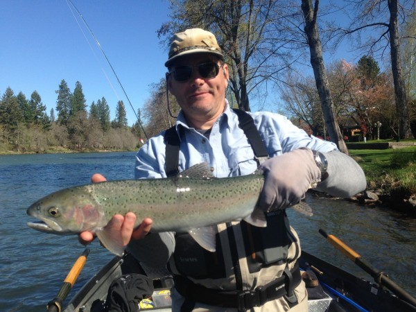 Rogue river steelhead wild waters fly fishing for Rogue river fishing report