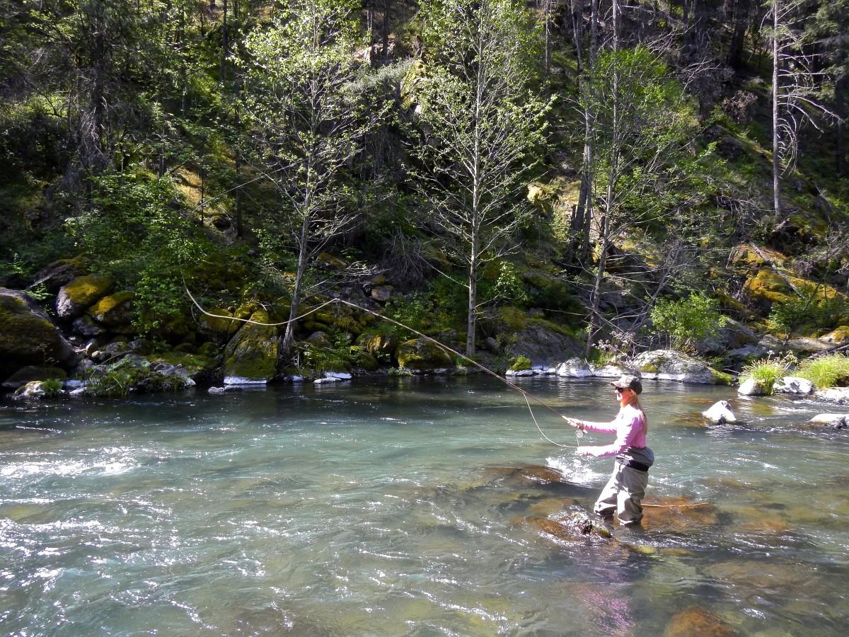 May 7th 2015 northern california fishing report wild for Fly fishing northern california