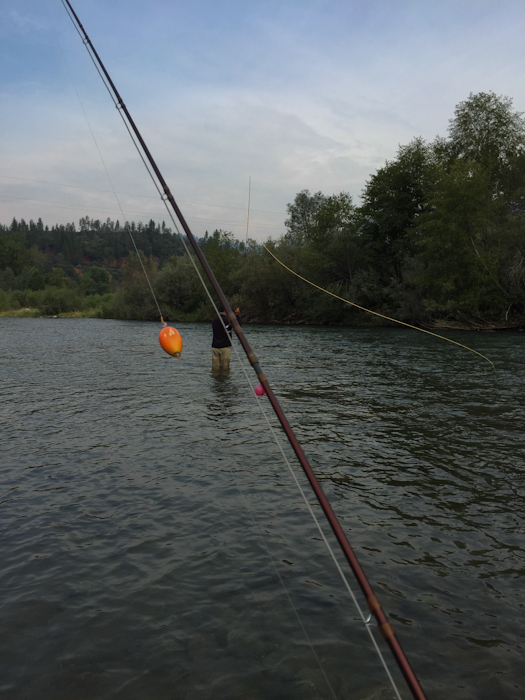 Bobber and bead down wild waters fly fishing for Fly fishing bobber
