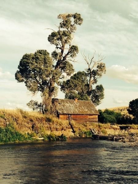Shields River 2