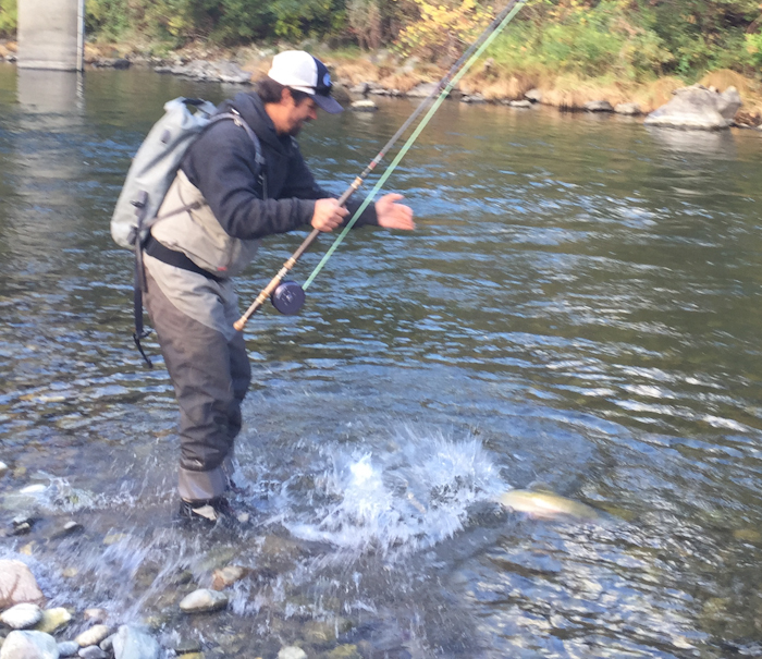 Trintiy with andy wild waters fly fishing for Klamath river fishing report