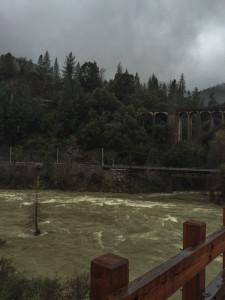 Dog creek confluence