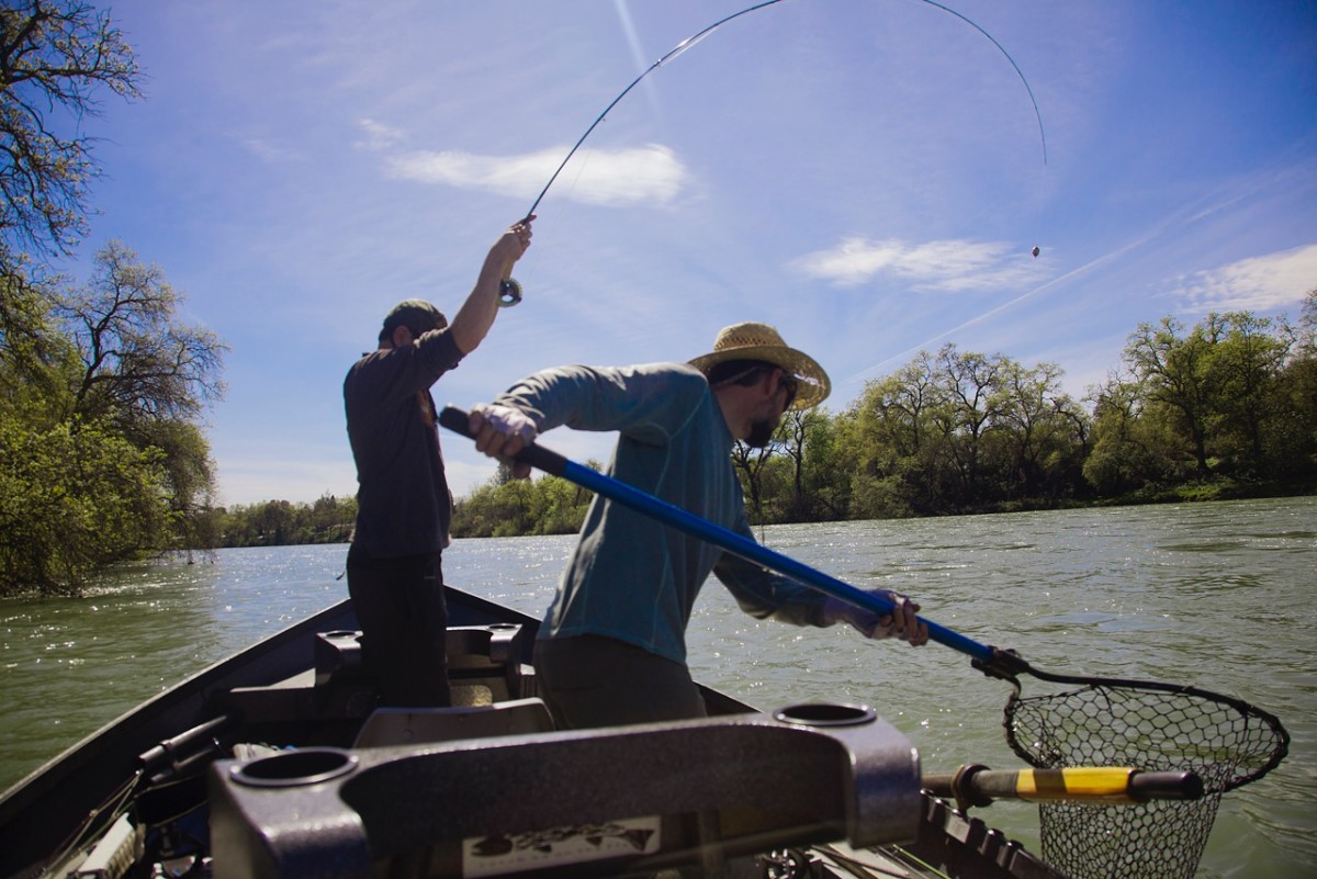 shastas headwaters an anglers guide to the upper sacramento and mccloud rivers