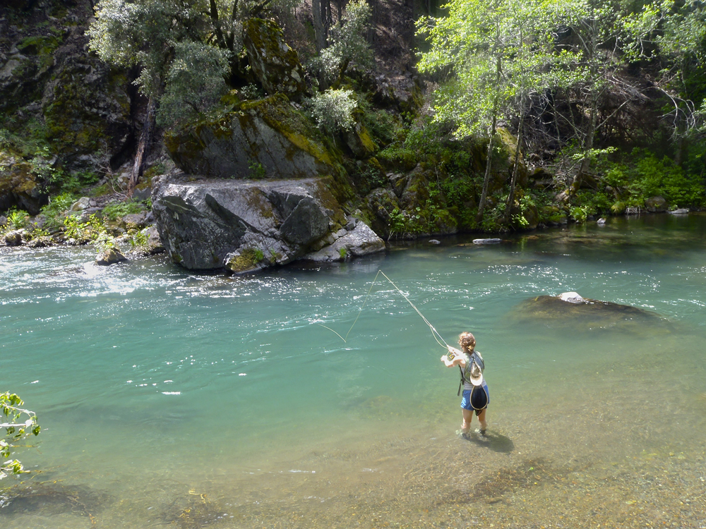 Mccloud fly fishing adventures wild waters fly fishing for River fly fishing